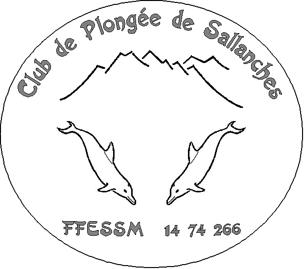 Logo2014 Sallanches